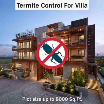 Termite Control Service in Villas