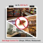 Services To Kill Bed Bugs