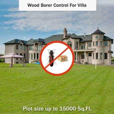 Wood Borer Control Service in Villa