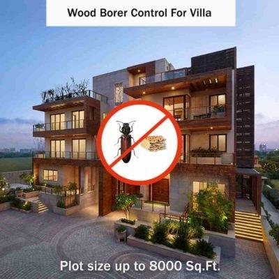 Wood Borer Control Service in Villas at hygienedunia