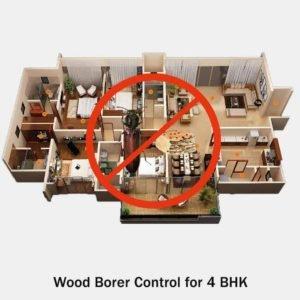 Wood Borers Control
